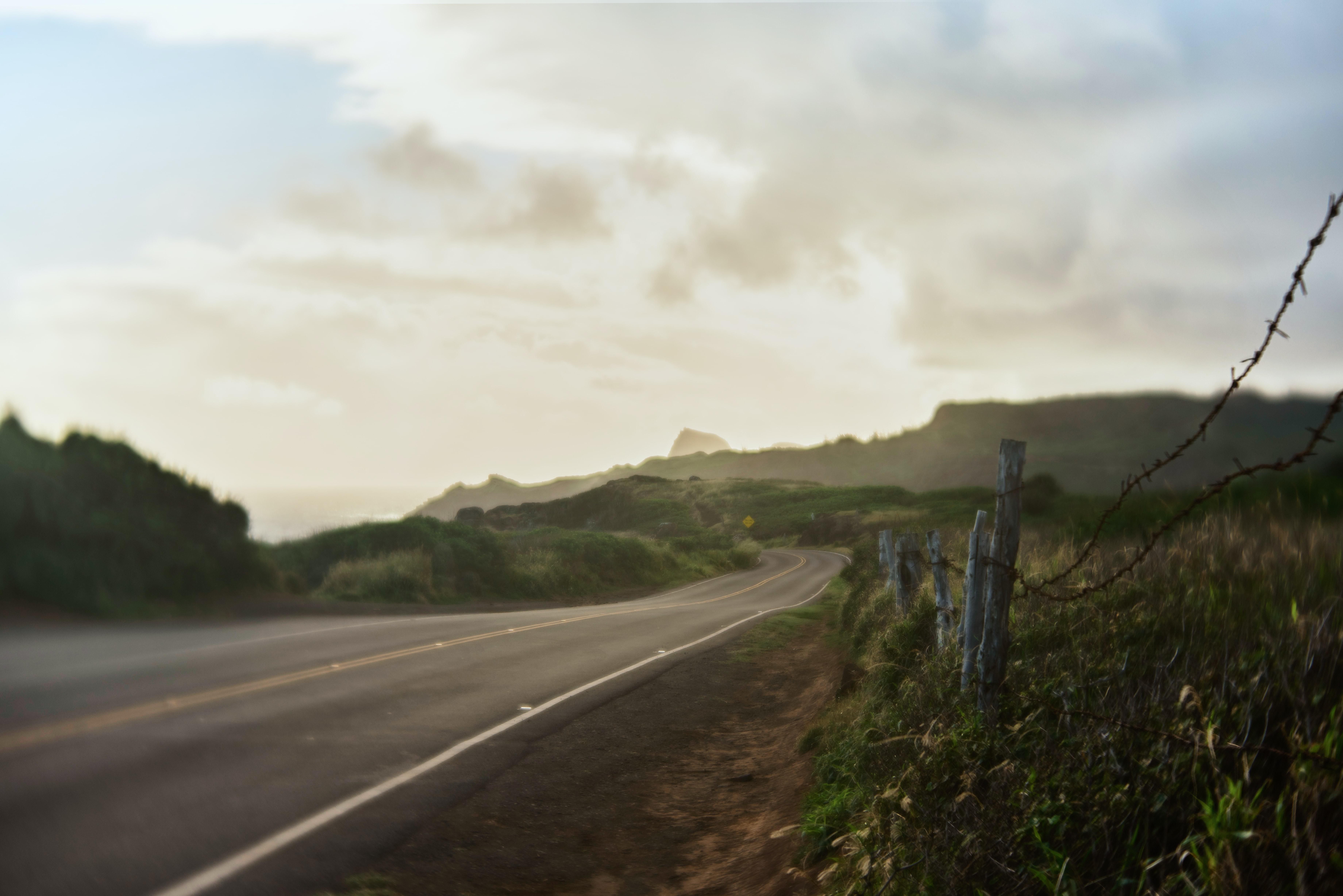 Ep17 - The road ahead in Genetics and Genomics